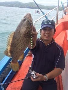 ハタ系の魚